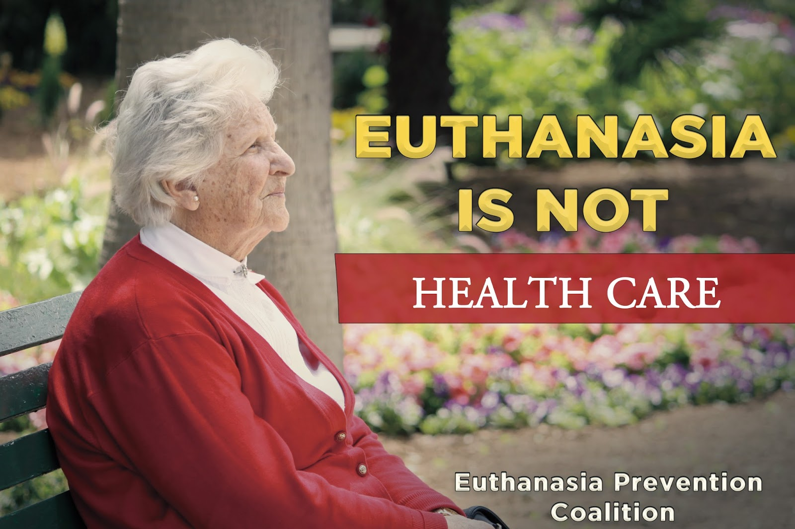 an argument against euthanasia in medical practices Many very solid arguments suggest that euthanasia—especially in the modern era—enjoys no place whatsoever in a medical practice treating human patients most of these reasons concern ethical and spiritual considerations, but at least two practical rationales exist as well.