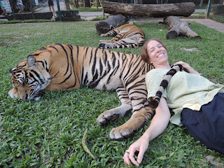 relaxing with a tiger