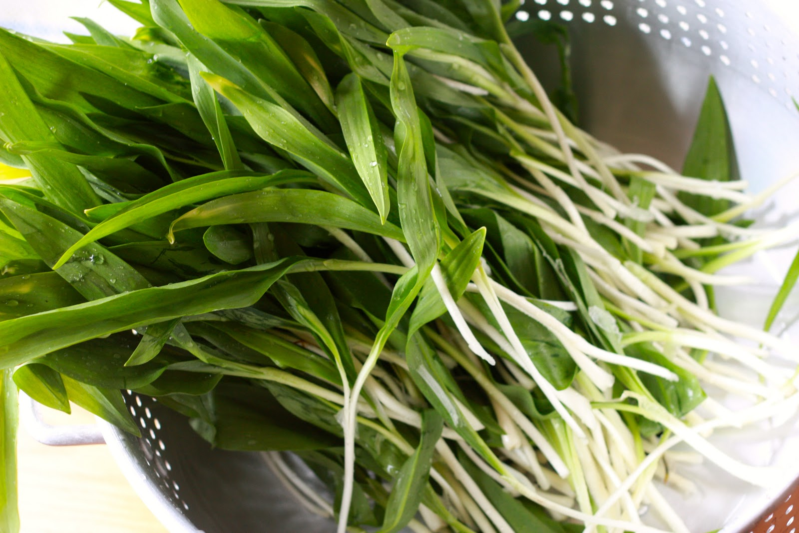 Wild Leek (aka Ramp) Pesto Recipes — Dishmaps