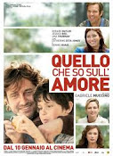 Quello che so sull&#39;amore (2013)
