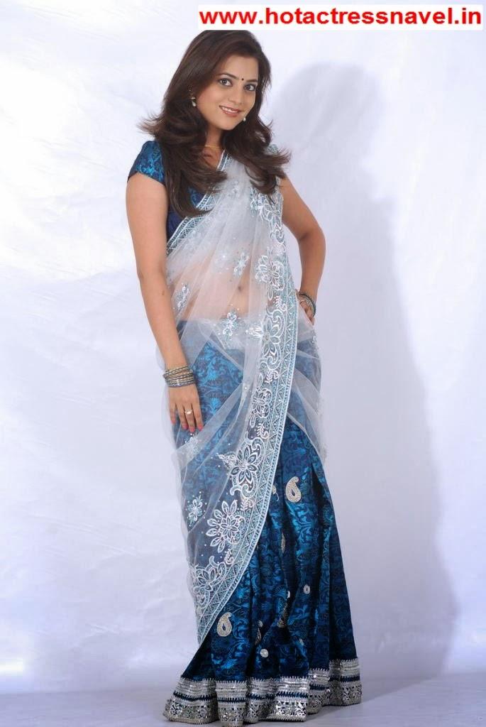 Nisha Agarwal Hot Navel Show In Blue Sari