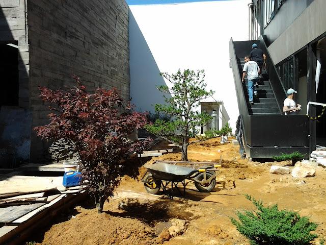 jardim japones studio boop