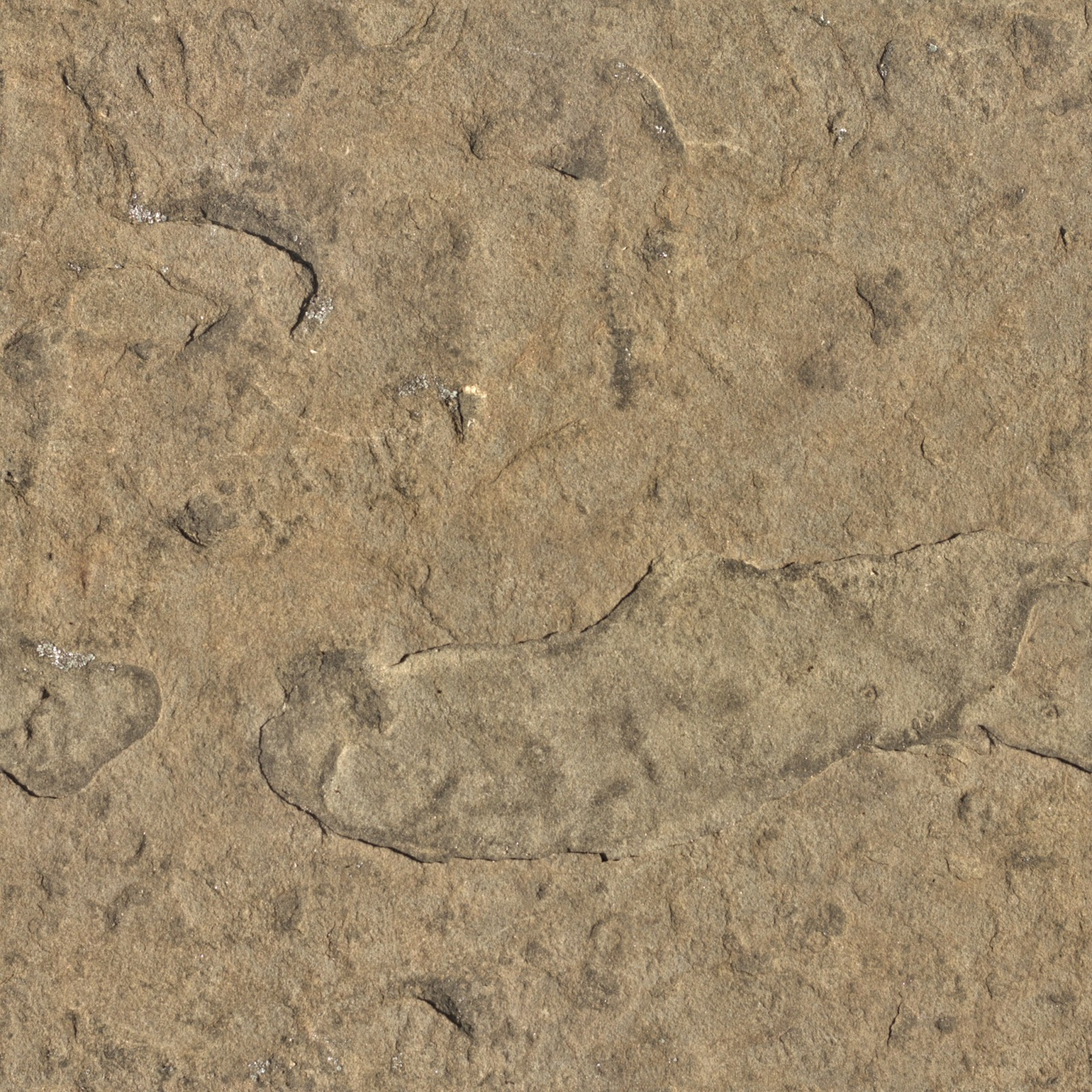 (Stone 7) rock cave mountain brown seamless texture 2048x2048
