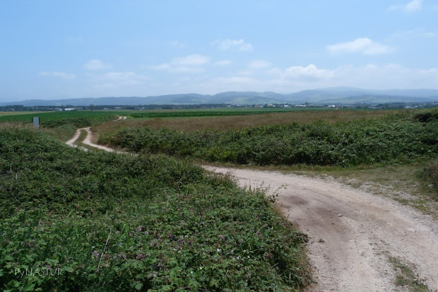 Senda costera Tapia de Casariego a Playa de Peñarronda - Asturias GR.E-9