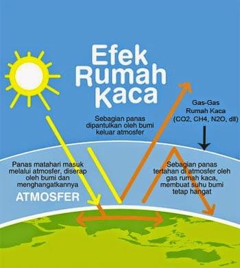 Dampak efek rumah kaca terhadap lingkungan dan kesehatan