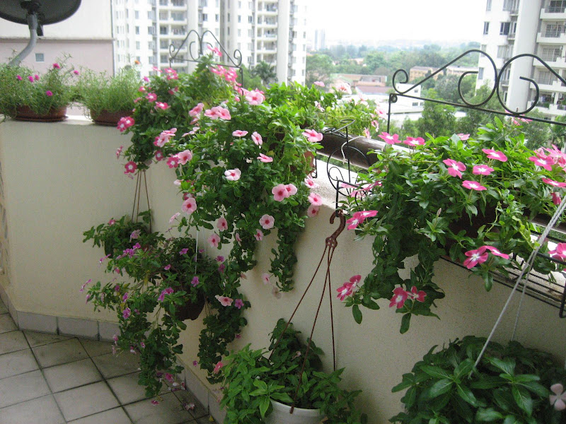 Обустройство цветущего балкона роскошь и уют.