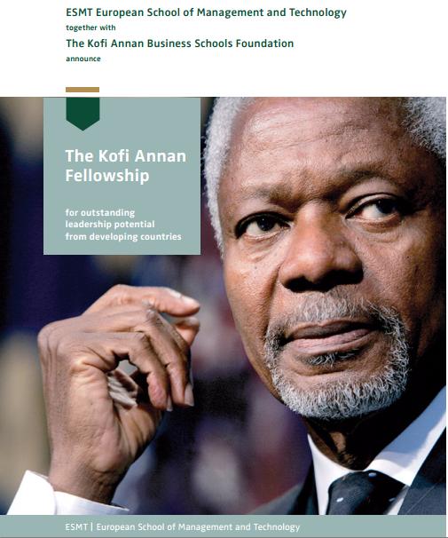 Kofi Annan Fellowship
