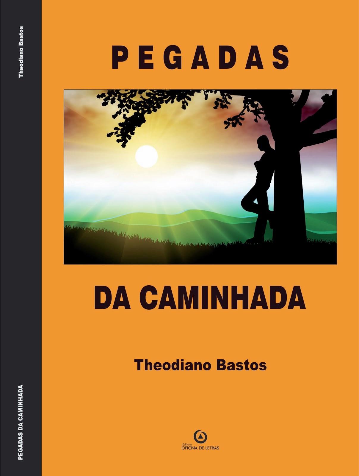 PEGADAS DA CAMINHADA (EDIÇÃO DIGITAL)