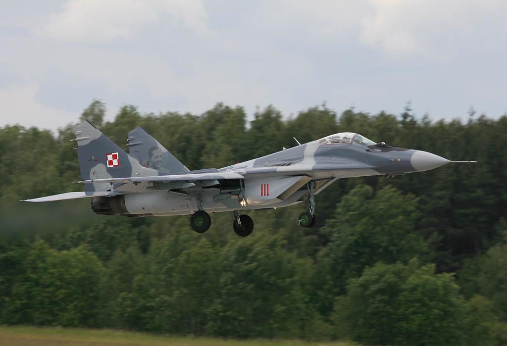 Les Forces Armées Polonaises/Polish Armed Forces - Page 5 IMG_0843