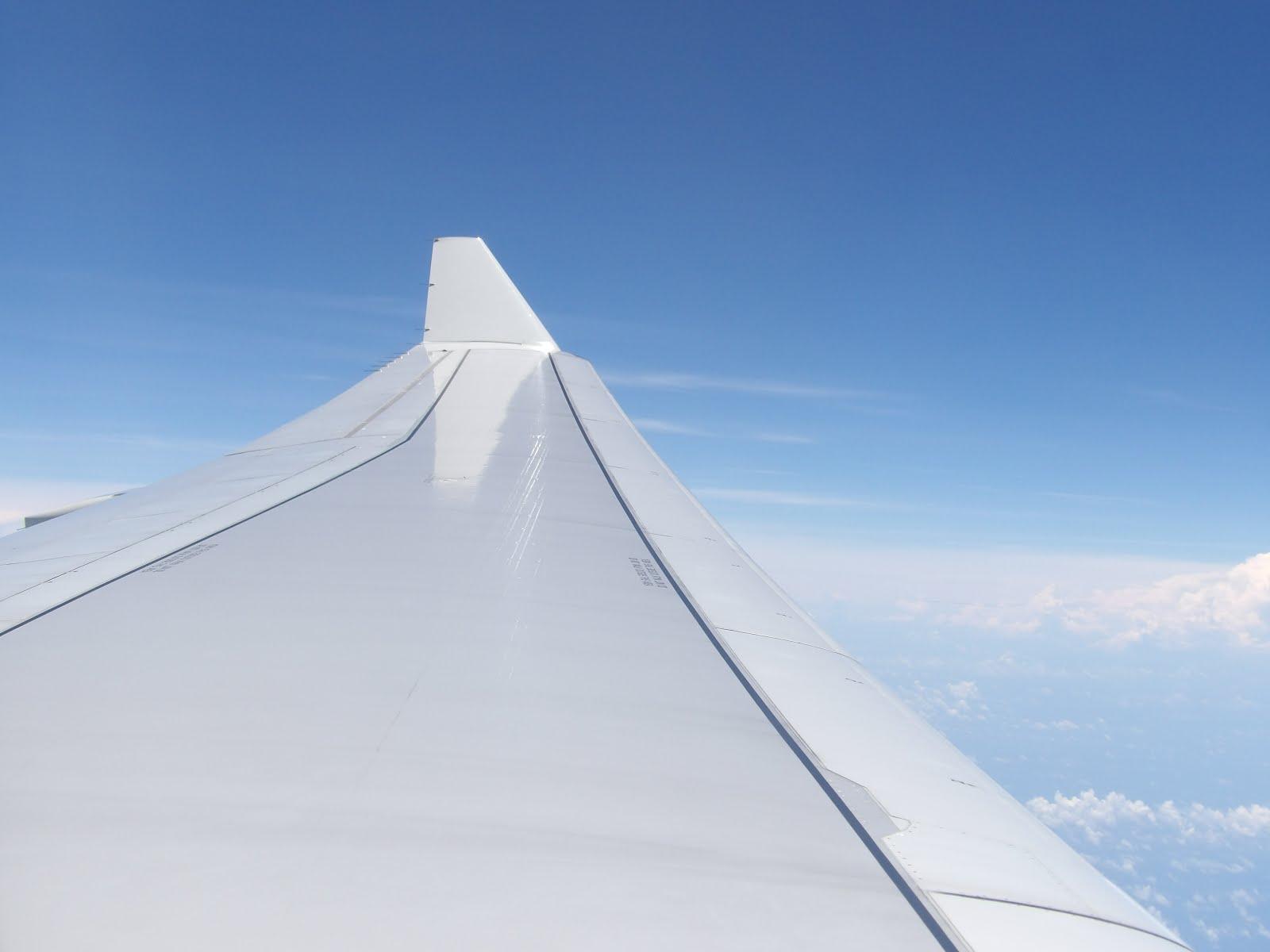 An aeroplane wing