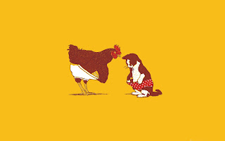 rooster and cat (27)