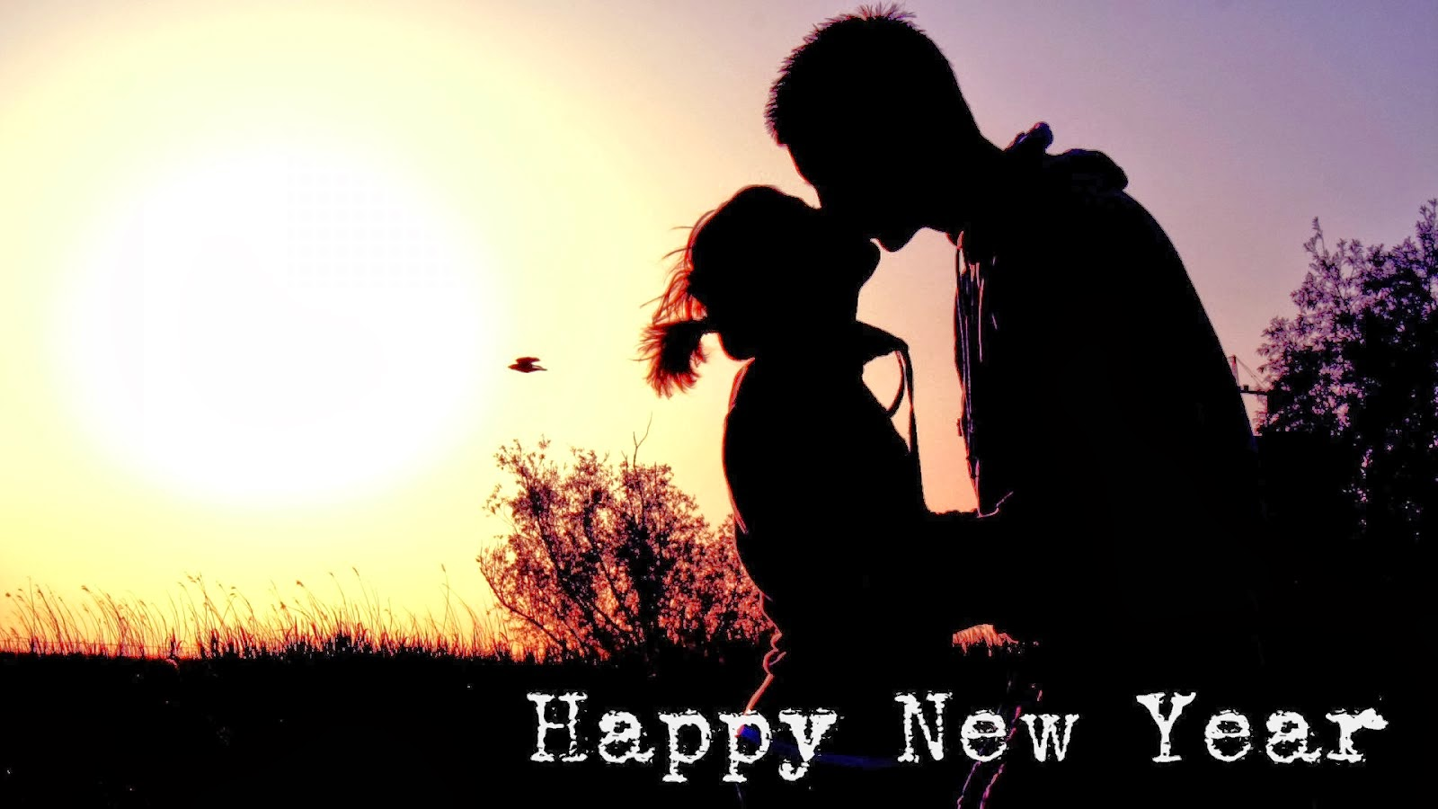 Year new Happy kiss pictures pictures