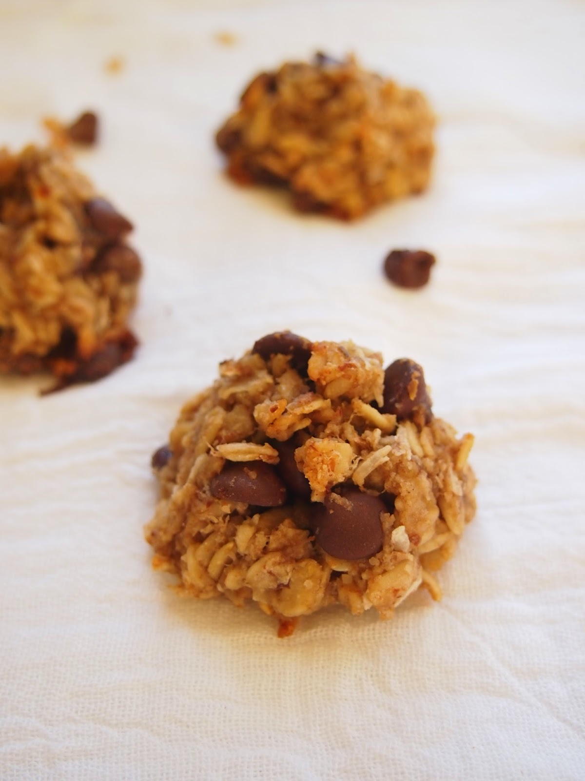 no added sugar chocolate chip oatmeal cookies