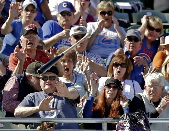 Смотреть бейсбол — это весело, пока вашему лицу не угрожает летящая бита.