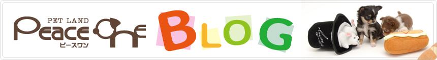 ペットランド・ピースワンのブログ|PeaceOne BLOG
