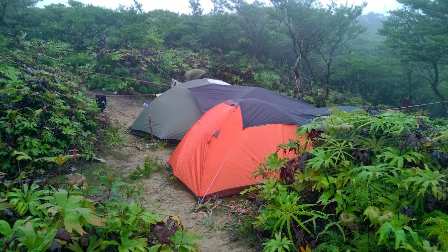 Tenda, tenda, tenda