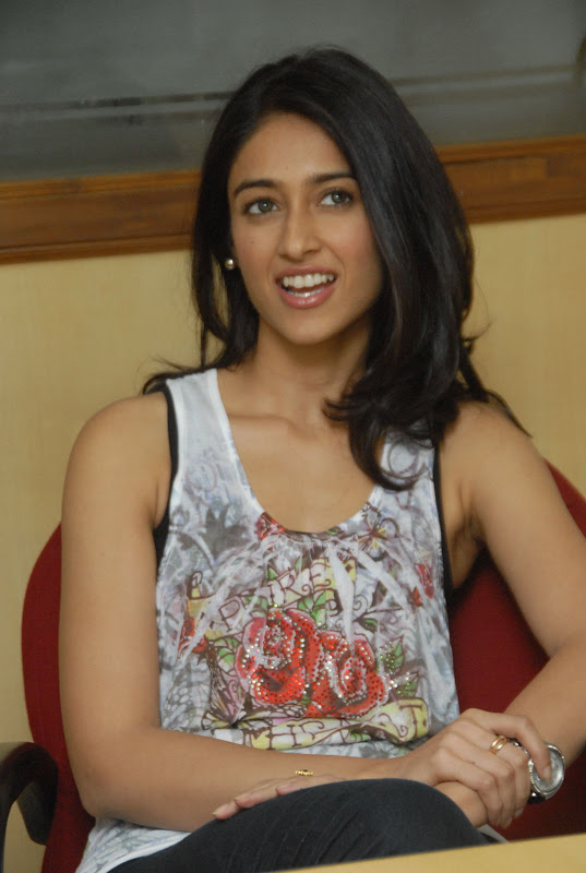Ileana Latest Cute Pictures navel show
