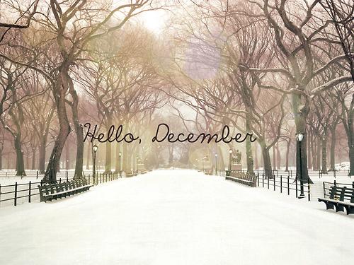 The Craziest Paradigm // fashion, beauty + lifestyle: Hello December, Byebye ...