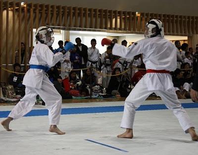Чемпионат, Япония - Россия, традиционное каратэ-до 2010