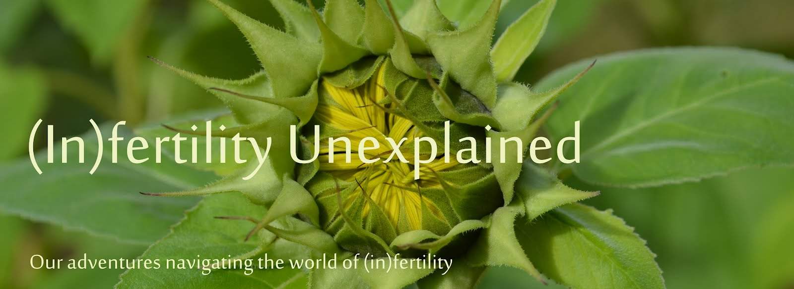 (In)Fertility Unexplained