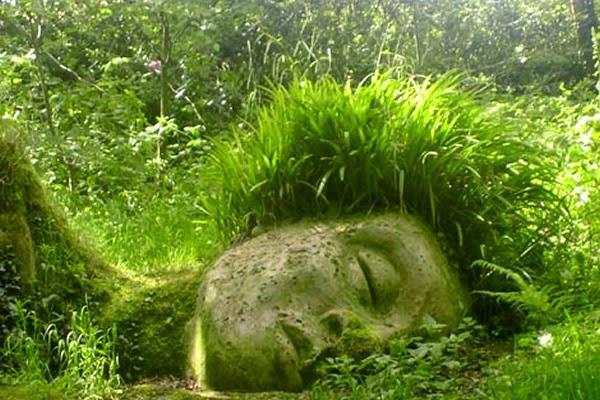 Diseño de Jardines: Los jardines perdidos de Heligan un paraíso bizarro