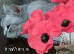 цветочные копозиции для инерьера.