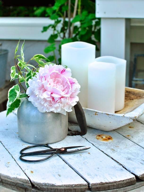 rosa pion i kaffepanna enjoycandles växthus