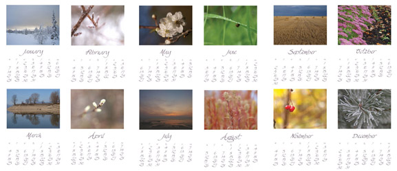 "calendar 2013 ""Simple Nature"" by marinaoseny marina aleksjutina"