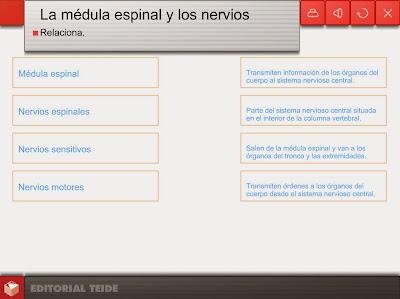 http://www.editorialteide.es/elearning/Primaria.asp?IdJuego=927&IdTipoJuego=3