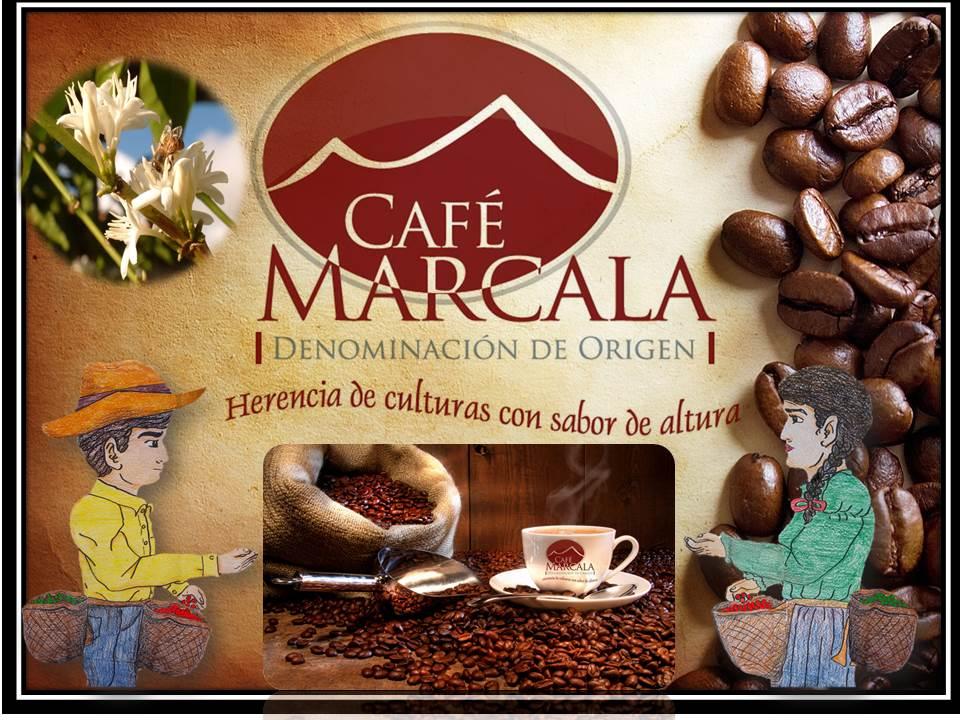 Exportando Café de Calidad