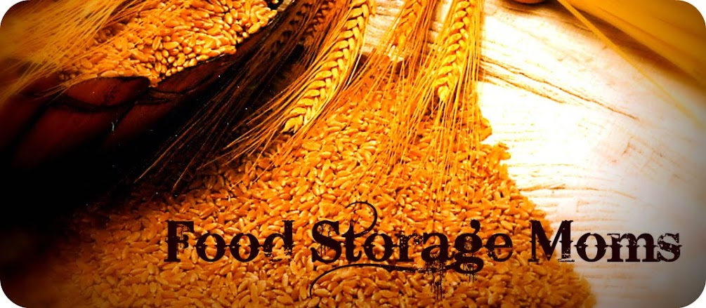 Food Storage Moms