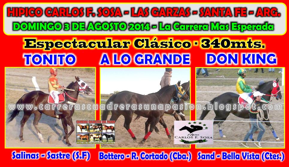 LAS GARZAS - CLASICO 340