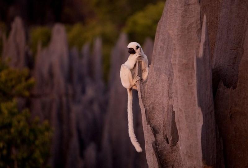 Madagaskar Kamena-suma-madagaskar-14