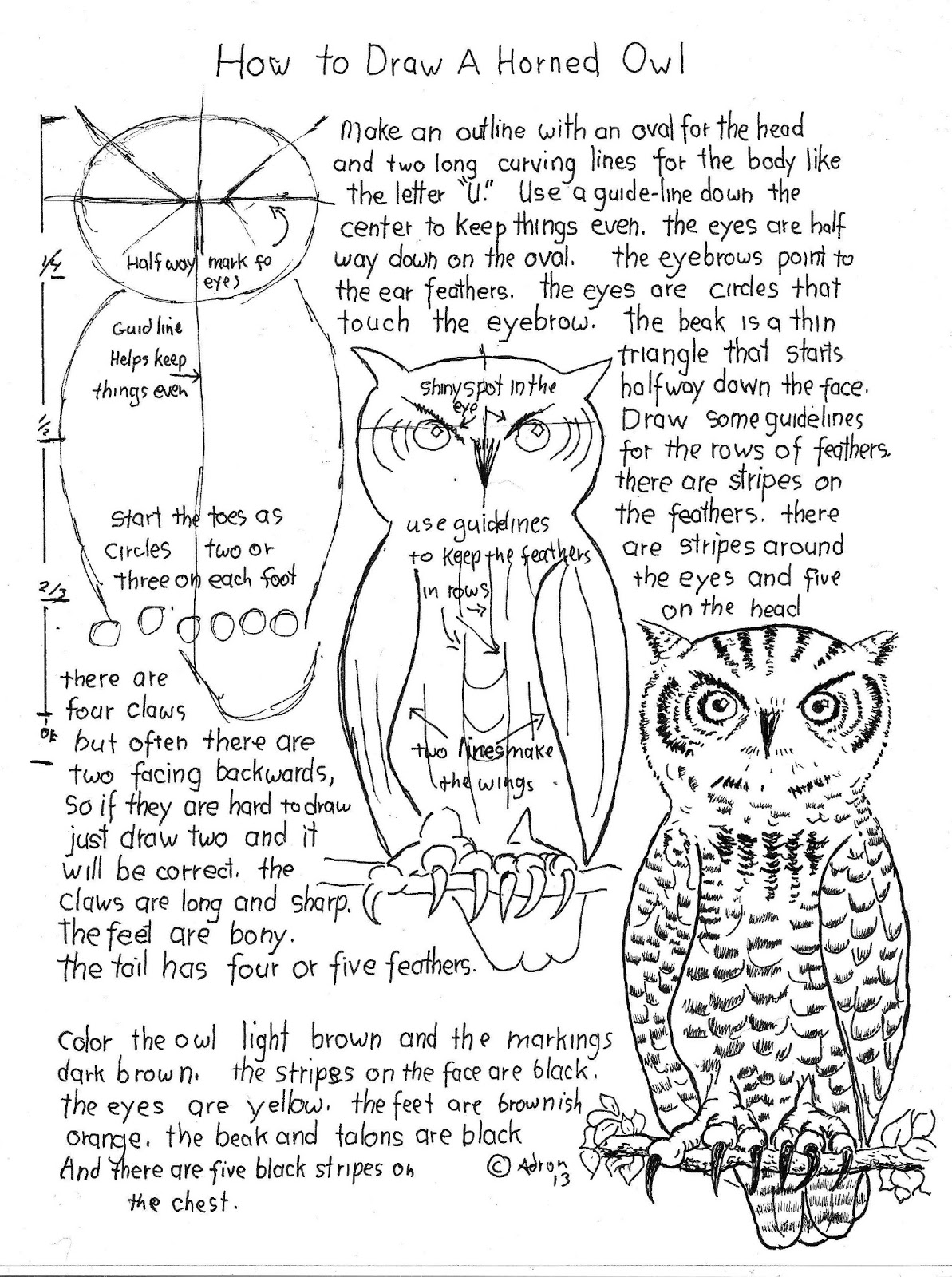 how to draw worksheets for the young artist how to draw a horned owl worksheet and lesson. Black Bedroom Furniture Sets. Home Design Ideas