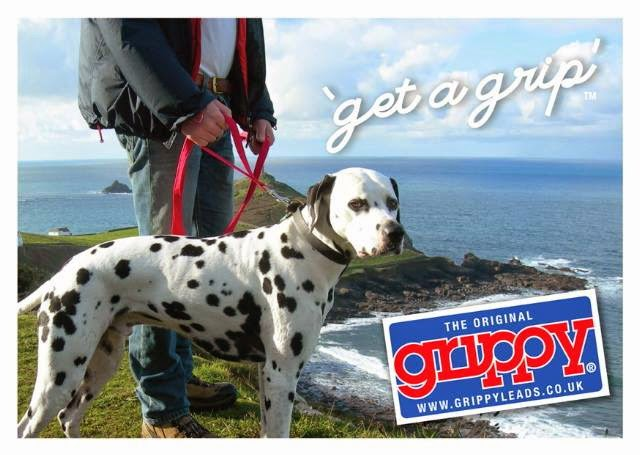Click here to purchase a Grippy Lead