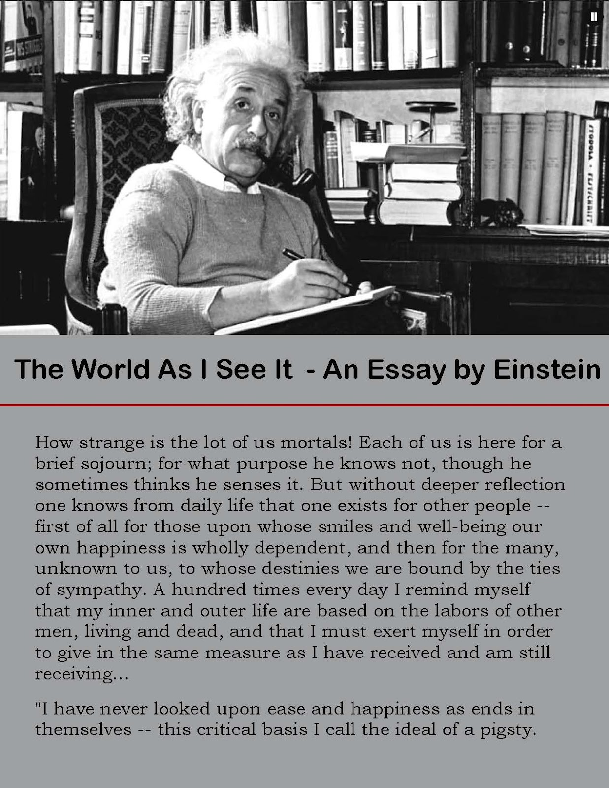 the world as i see it essay