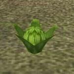 Sorrel screenshot harvest moon wonderful life