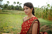 Tanvi vyas Latest Photos in Half Saree-thumbnail-11