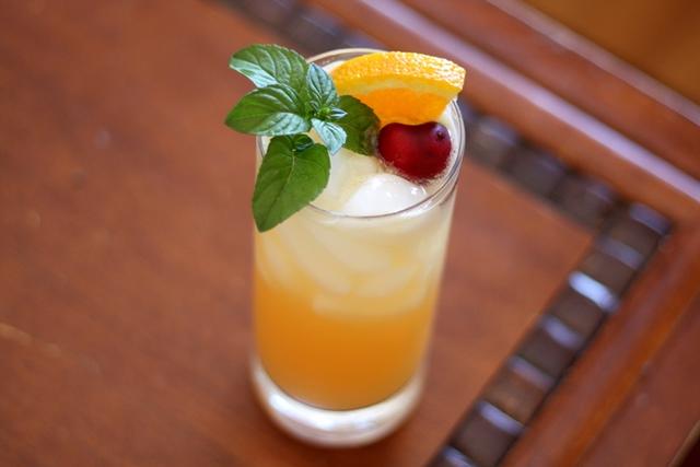 St-Germain Citrus Splash recipe by Barefeet In The Kitchen