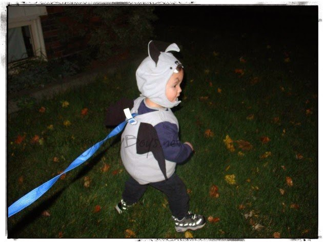toddler in bat costume Halloween