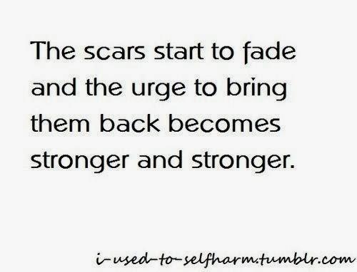 Quotes Self Harm Scars. QuotesGram