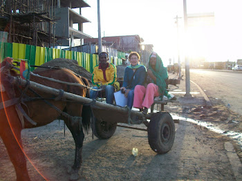 Horse and buggy (taxi)