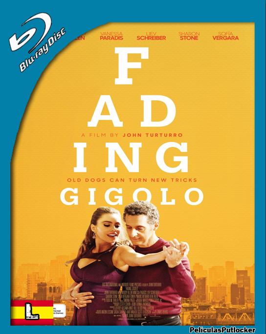 Aprendiz De Gigolo (2013) BRRip 720p Latino