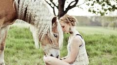 Horse Hair Fiber for Organic Mattress