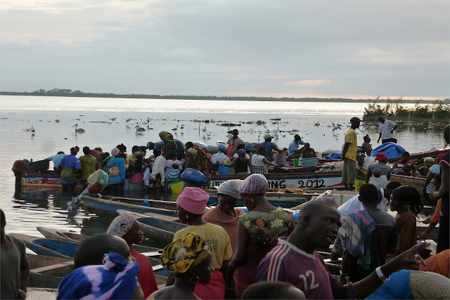 Regreso de los pescadores a puerto - Ziguinchor