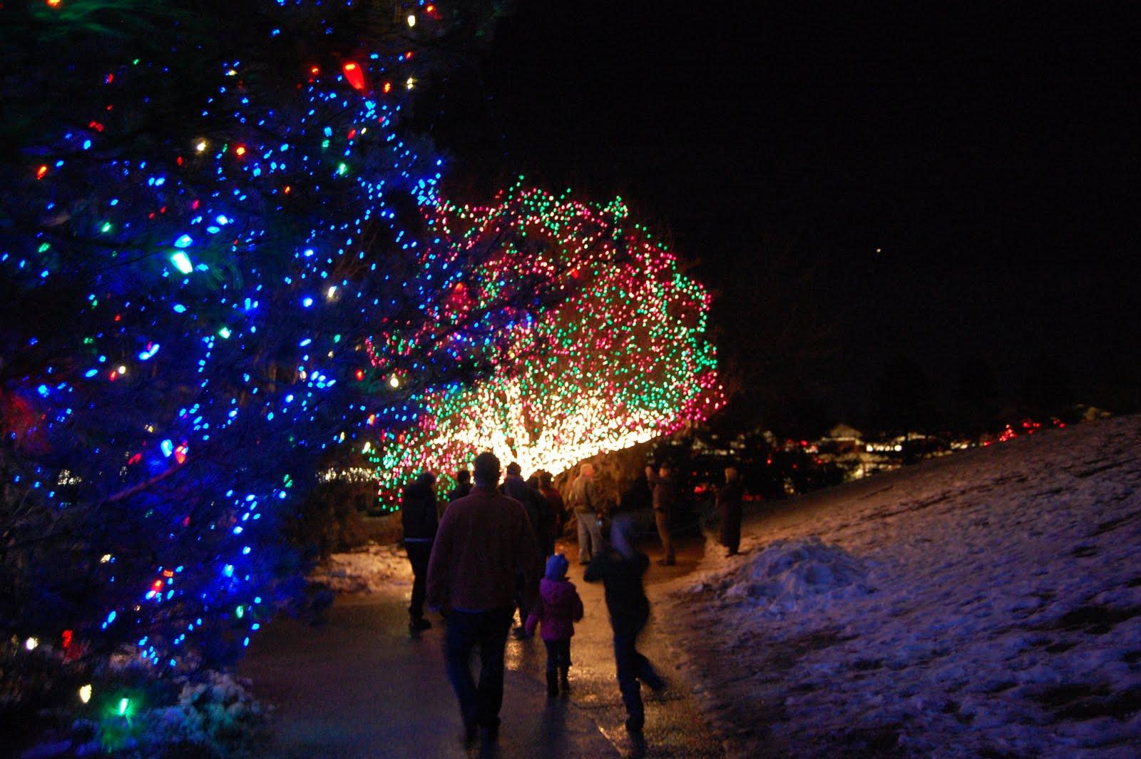 The Bischoffs Denver Botanic Gardens Blossoms Of Light