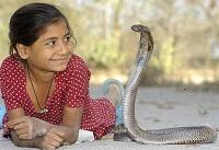 http://www.aluth.com/2014/06/snake-caught-girl.html