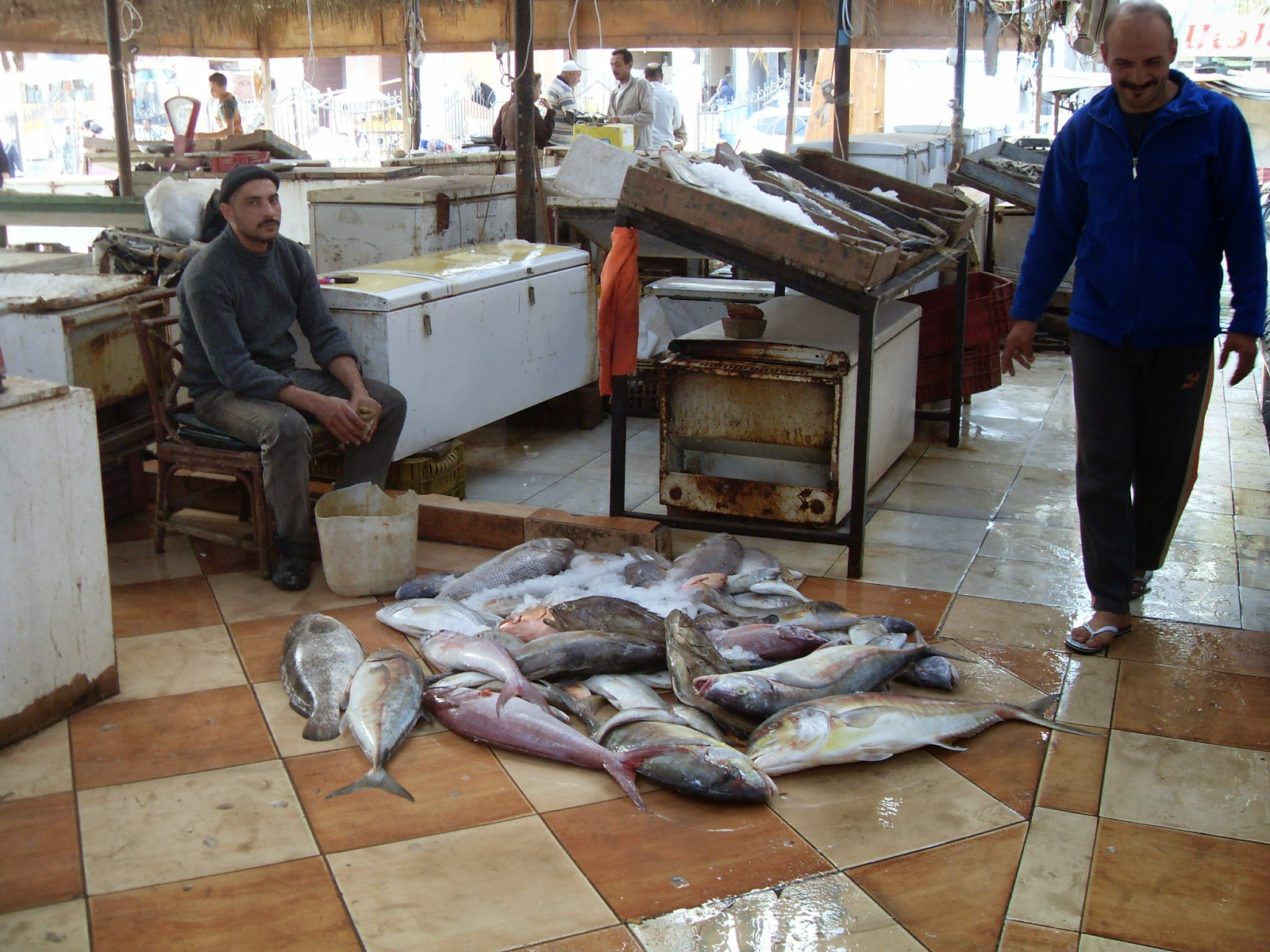Fisch aus dem en Thanneya Samak