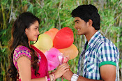 Nuvve Naa Bangaram Movie Photos-thumbnail-4