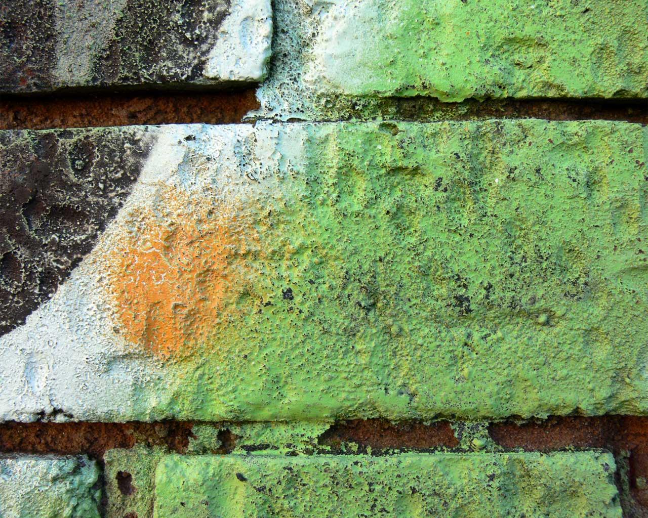 http://4.bp.blogspot.com/-vgD2bUXOdIw/ToQKOqabO8I/AAAAAAAAACU/DqpcPMuYfn4/s1600/brick-wallpaper-21-718008.jpg